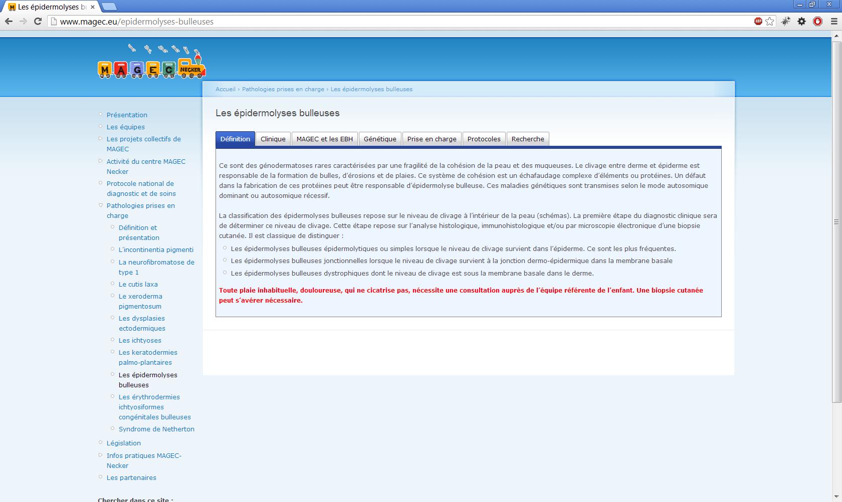 www.magec.eu